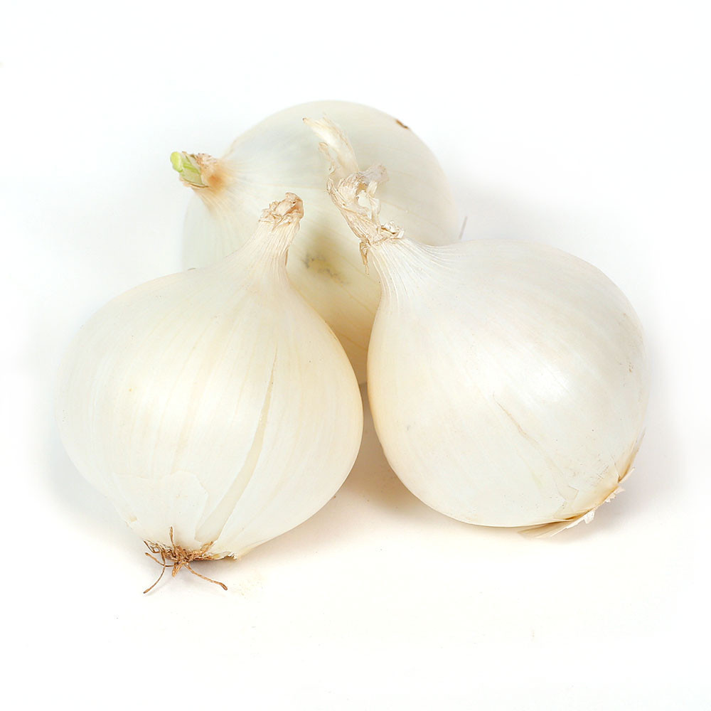 White Onions 12 2lb 1 Hispanic Wholesale Distributor In